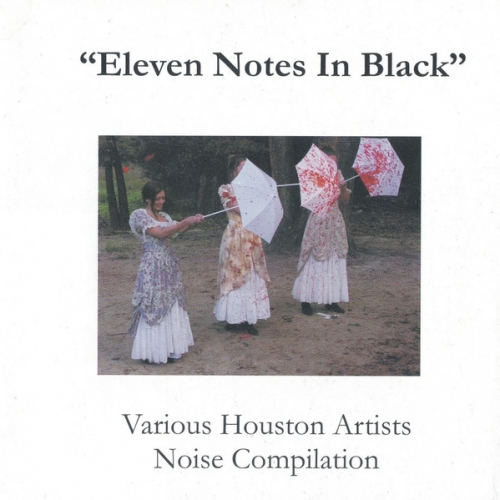 Various Artists ‎– Eleven Notes In Black CD 2009