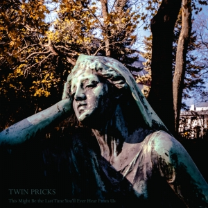 "Twin Pricks ‎– This Might Be The Last Time You'll Ever Hear From Us 12"" LP 2013"
