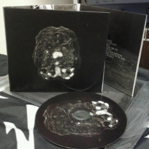 The Vomit Arsonist ‎– Go Without CD 2012